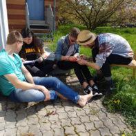 talk2move_Teamleiterseminar_Mainz_April_2017-16