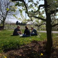talk2move_Teamleiterseminar_Mainz_April_2017-29