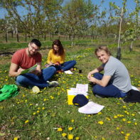 talk2move_Teamleiterseminar_Mainz_April_2017-35