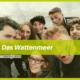 talk2move Blog - Das Wattenmeer - Projekte WWF