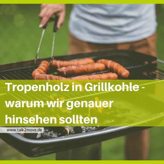 talk2move Blog - Tropenholz in Grillkohle - warum wir genauer hinsehen sollten - Grillen