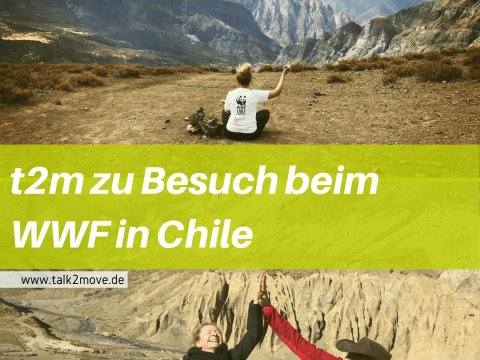 talk2move Blog - t2m zu Besuch beim WWF in Chile 2018