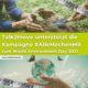 Talk2move unterstützt die Kampagne #AlleMachenMit zum World Environment Day 2021