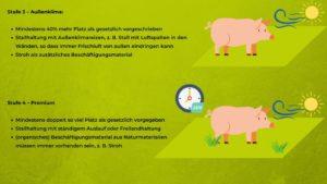 Schwein - Haltungsformen 3 und 4